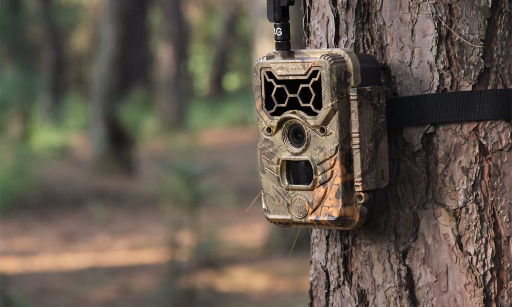 How To Determine Which Trail Camera Is Best For You?